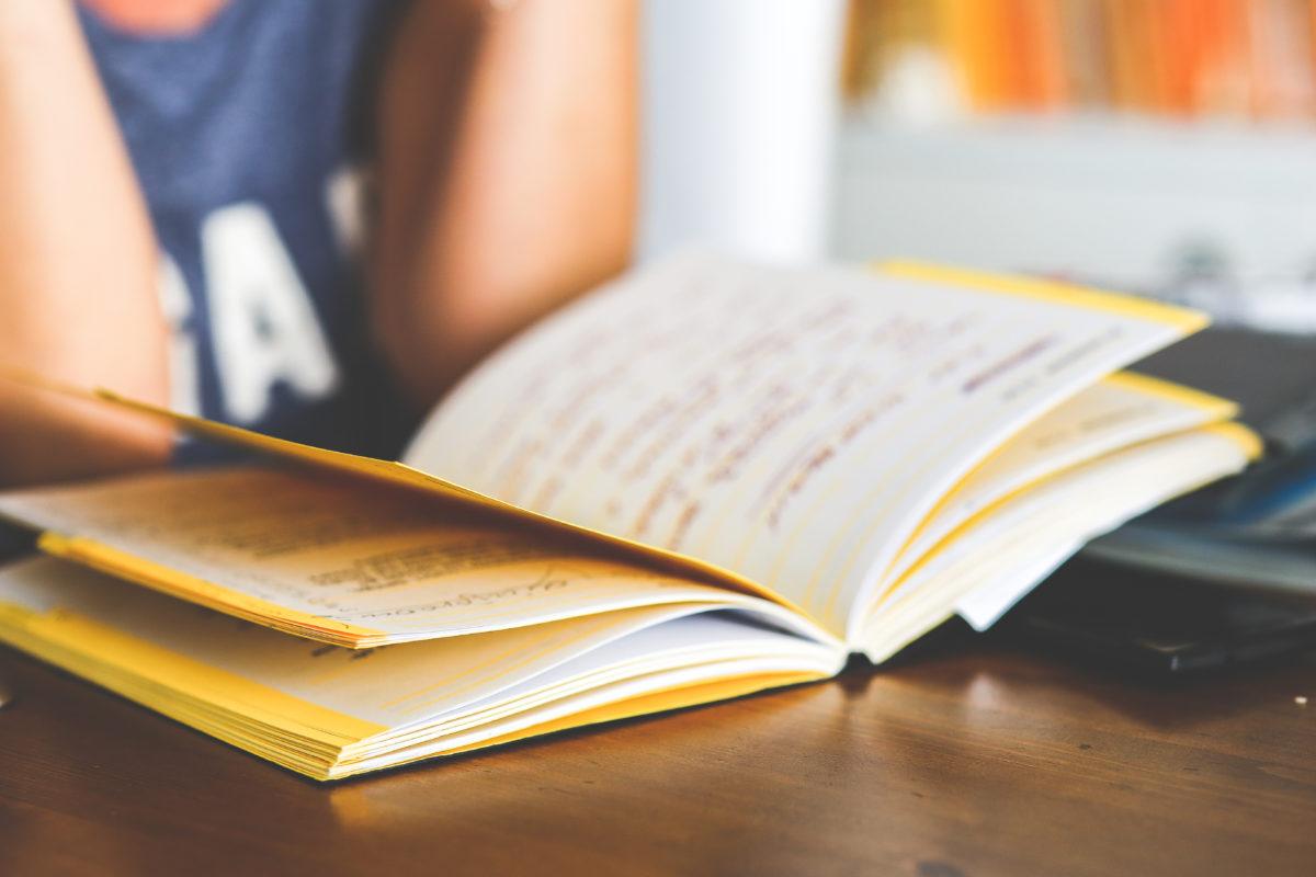 Informacje dla studentów w celu przyjęcia stażu lub praktyki – wszystko o wzmocnieniu zawodowym.
